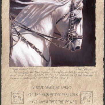 A life long love of horses